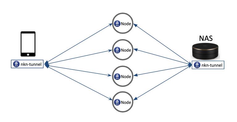 NAS multi paths