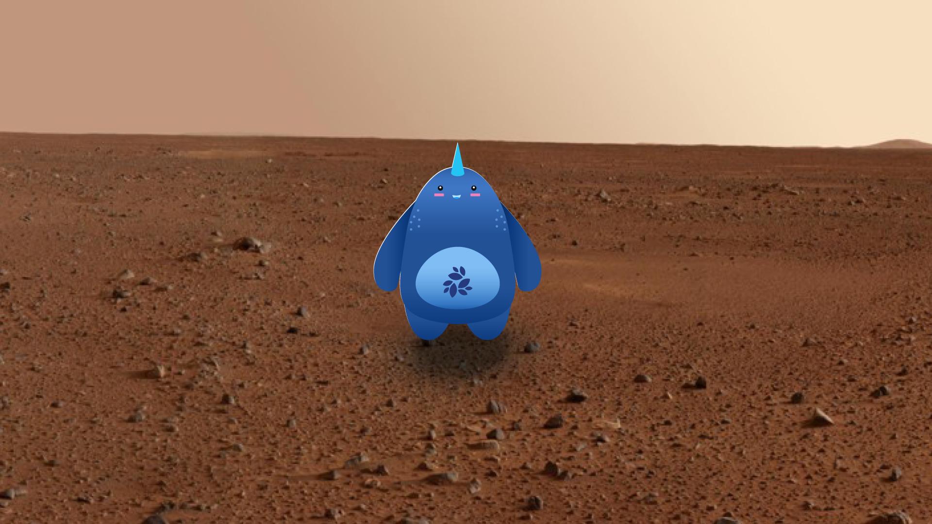 Mars_NKN