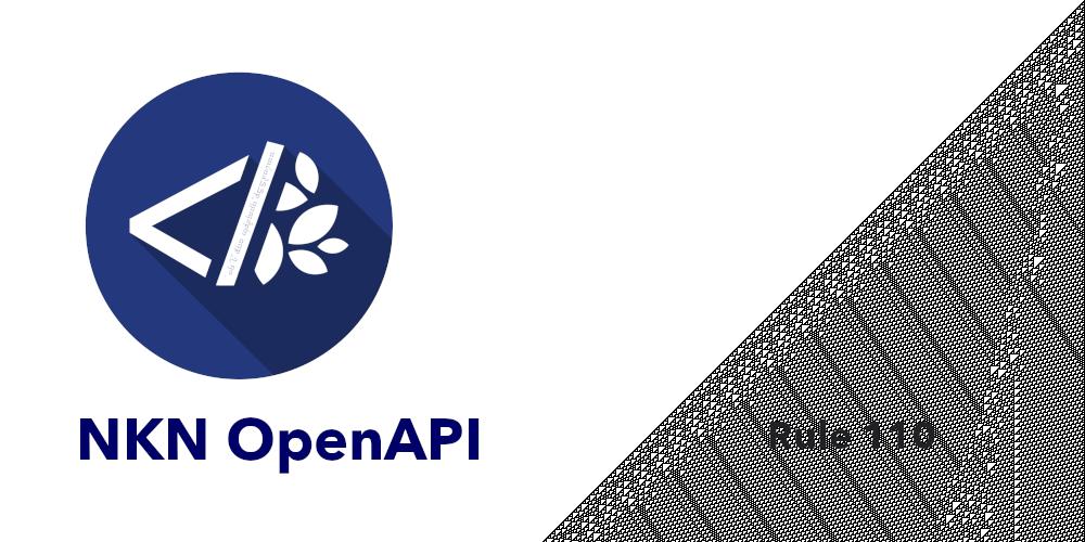 Rule110 NKN OpenAPI